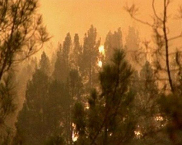 Požar v naravnem parku Yosemite