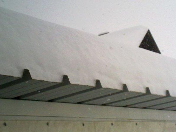 Sneg v Kočevju