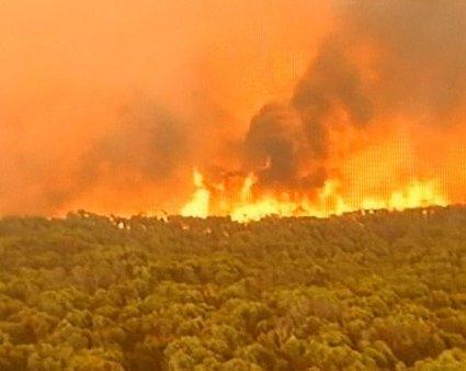 Požar v Avstraliji