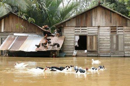 Poplave v Maleziji