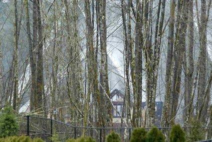 Požig vil v Seattlu