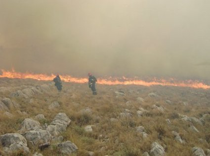 Požar na Kornatih