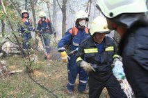 Slovenski gasilci