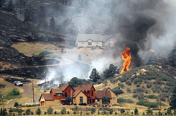 Požar v naravi - 4