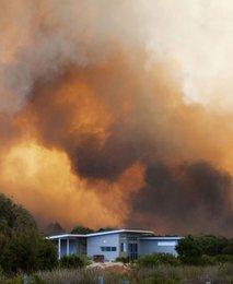 Gozdni požar v Avstraliji