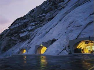 Vse rastline tega sveta so varno skrite v dobrovju norveške gore. (Foto: Wikipedia)